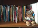 BookshelandBearIMG_5210